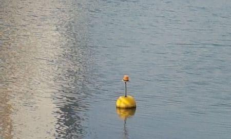 sphere floats triton uae